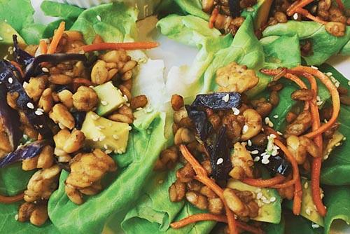Chickpea, carrot, sesame seeds, vegetables on a bed of lettuce.