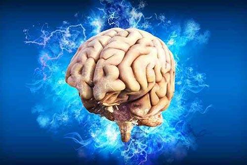 Computerised image of a brain