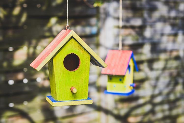 DIY birdhouses.
