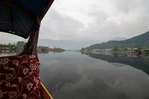 View of the Dal Lake from a Shikhara (a small boat).